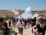 Bil'in2005