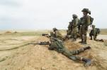 IDF aiming
