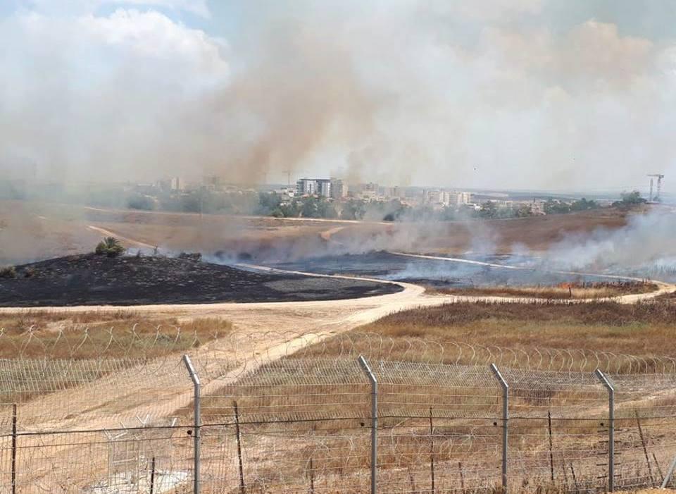 Verbrannte Erde am Grenzzaun
